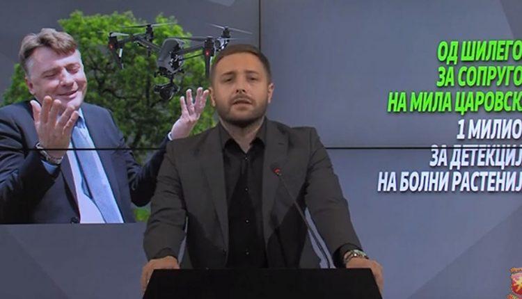 Нема дрон што открива болни растенија, ниту Град Скопје има стручна служба што би испитувала примероци