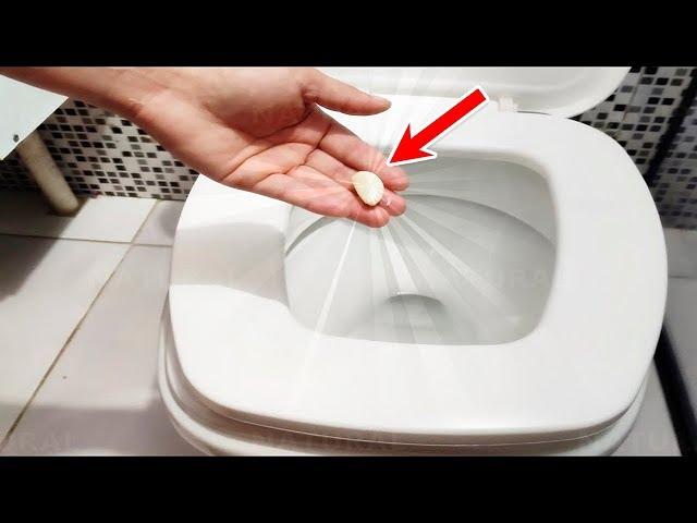Еднаш неделно ставајте чешне лук во тоалетната школка, за овој совет ќе ни бидете благодарни