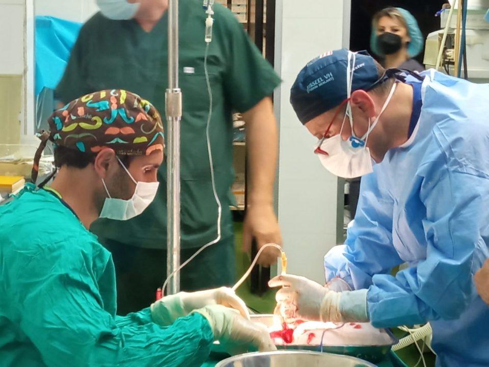 """""""Храбро срце"""" бара самите да одлучуваме да донираме органи додека сме живи"""