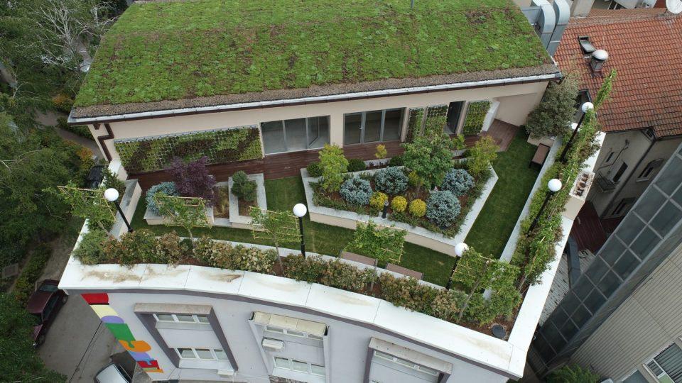 Зелениот покрив на Домот на градежниците ќе биде летно кино