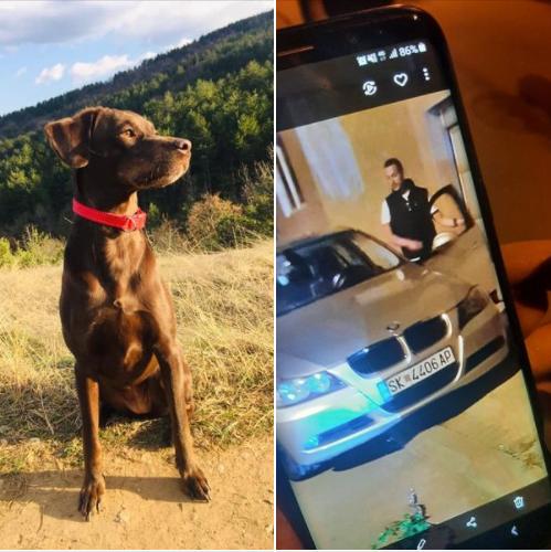 Да ги најдеме кучето Уна и пијаната џукела во бе-ем-ве, која тепа жени на улица