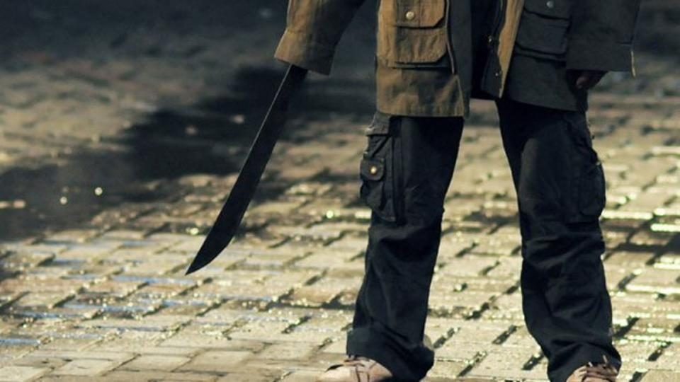 Скопјанец низ Центар се шетал со мачета