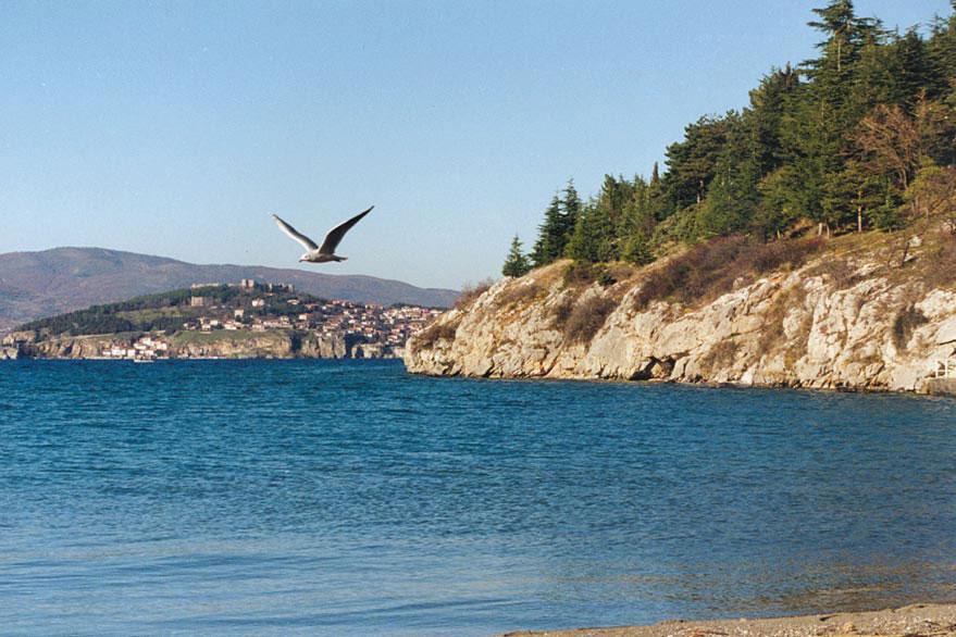 Македонија ги номинираОхридско Езеро и Студенчишко Блато како трето и најголемо Рамсар место во државата