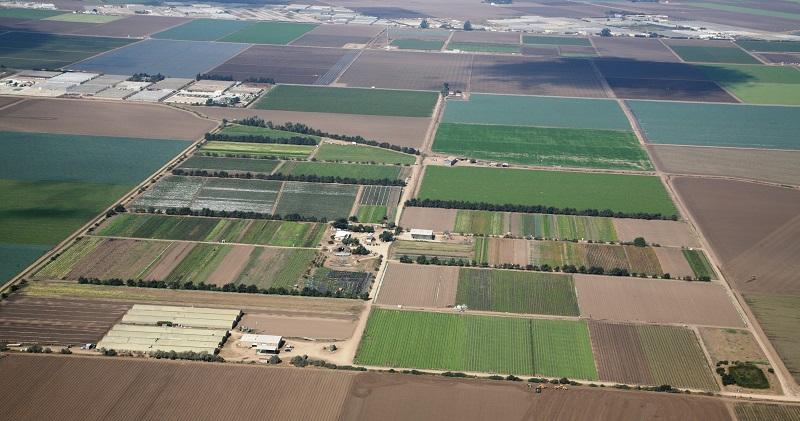 Јавна расправа за Нацрт-законот за продажба на државно земјоделско земјиште