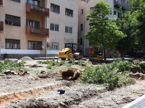 Митева: Шилегов ја излажа јавноста, Град Скопје и Општина Центар имале решение за сечење на 3 дрва, а исекоа 10