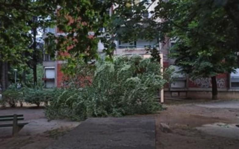 Невреме го зафати Белград: Два часа врнеше обилен дожд, град, силни грмотевици и ветер