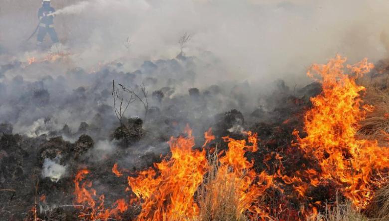 Шест пожарникари се борат со огнените јазици во Валандовско