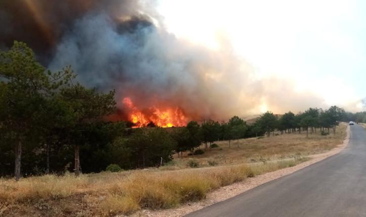 Привремено ставен под контрола пожарот што и се закануваше на периферијата на Кочани