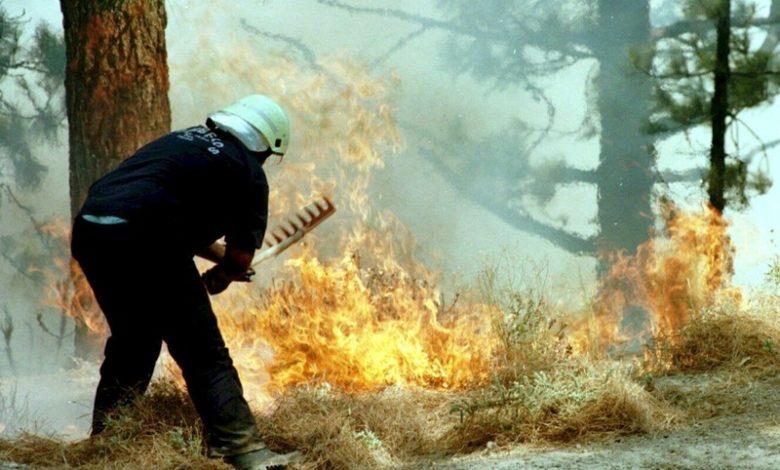 Шумски пожар беснее западно од Барселона, уништени 1.100 хектари