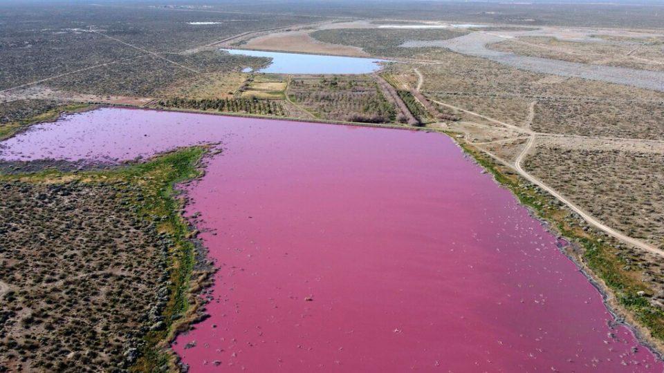 Мистериозна појава: Две езера во Аргентина станаа розови