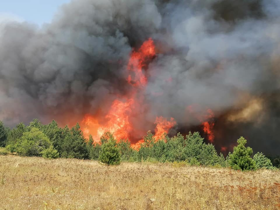 Крици за помош од пехчевското село Умлена: Огното е пред селото! Помош бара и општина Берово