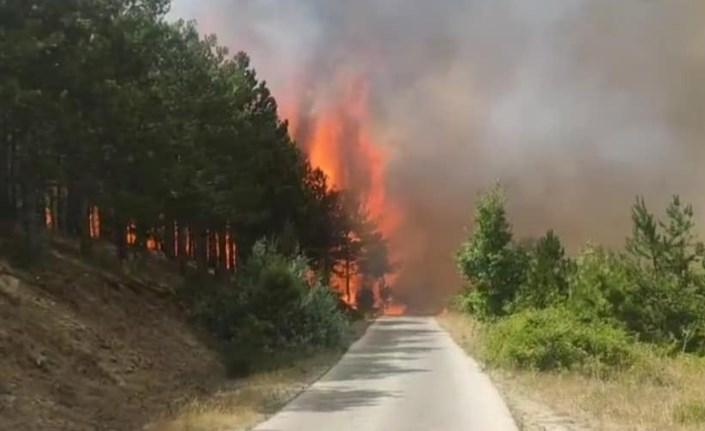 ДЗС ги мобилизира тимовите за заштита и спасување од пожари – апел да се вклучат и доброволните противпожарни друштва
