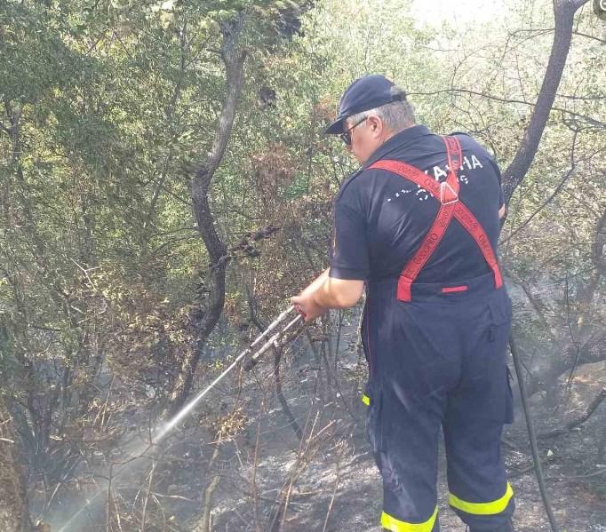 """Нов пожар, овој пат кај средното училиште  """"Димитар Влахов"""""""