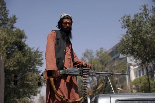 Taлибанците се изјаснија: Не сме терористи