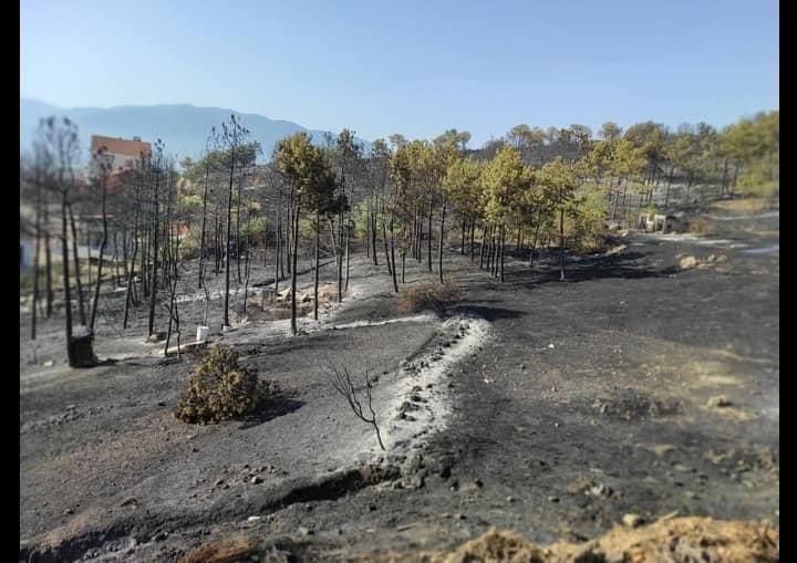 Фотогалерија од Кочани, ноќта по пожарот