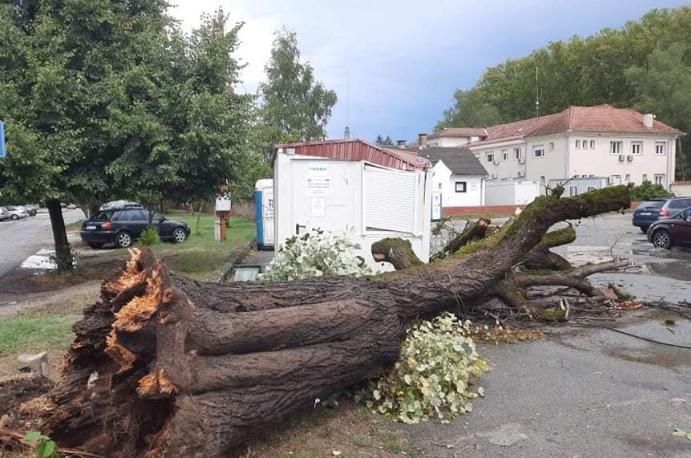 Силна бура ја погоди Хрватска