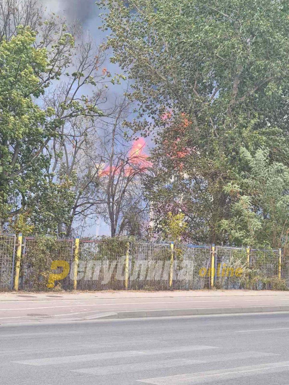 """Кривично ќе се гони 36-годишникот кој го предизвика пожарот во """"Охис"""""""