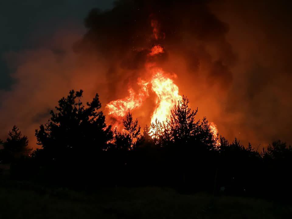 Умлена гори! Гасењето на пожарот отежнато поради непристапниот терен