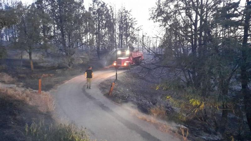 За еден ден во Ранковце и Крива Паланка опожарени 225 хектари