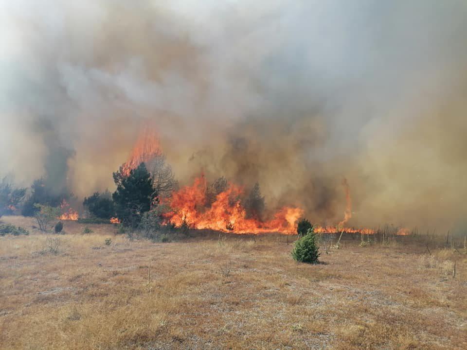 Погледнете како гореше во малешевскиот регион