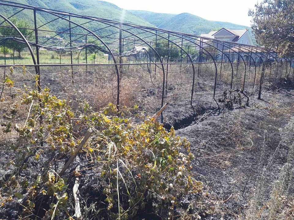 Пожарот во Дабиле го предизвикал 29-годишен жител на Баница
