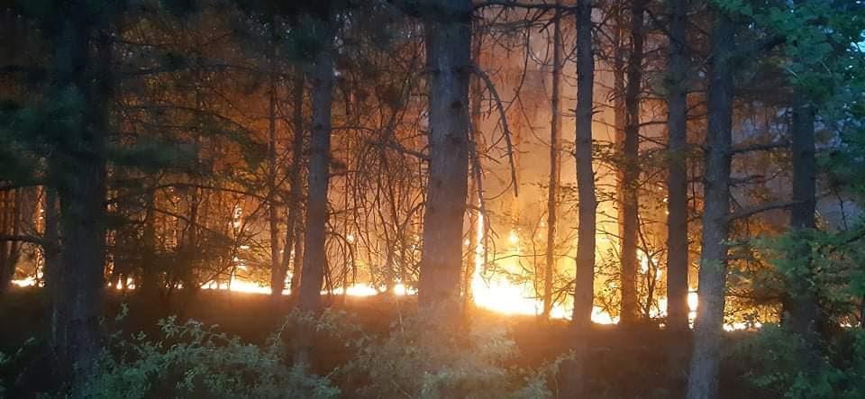 ВМРО-ДПМНЕ ќе поднесе кривични пријави за власта за ненавремено справување со пожарите