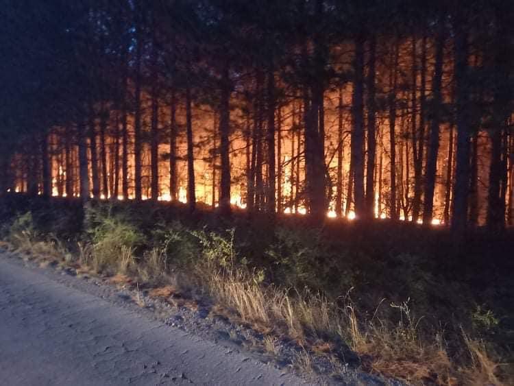 Се налути свети Илија, ја запали Македонија: 16 пожари во Скопје, Кочани во пламен, гори и Кокино, пожари во цела земја