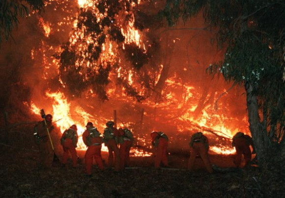 Беснеат пожари во Русија