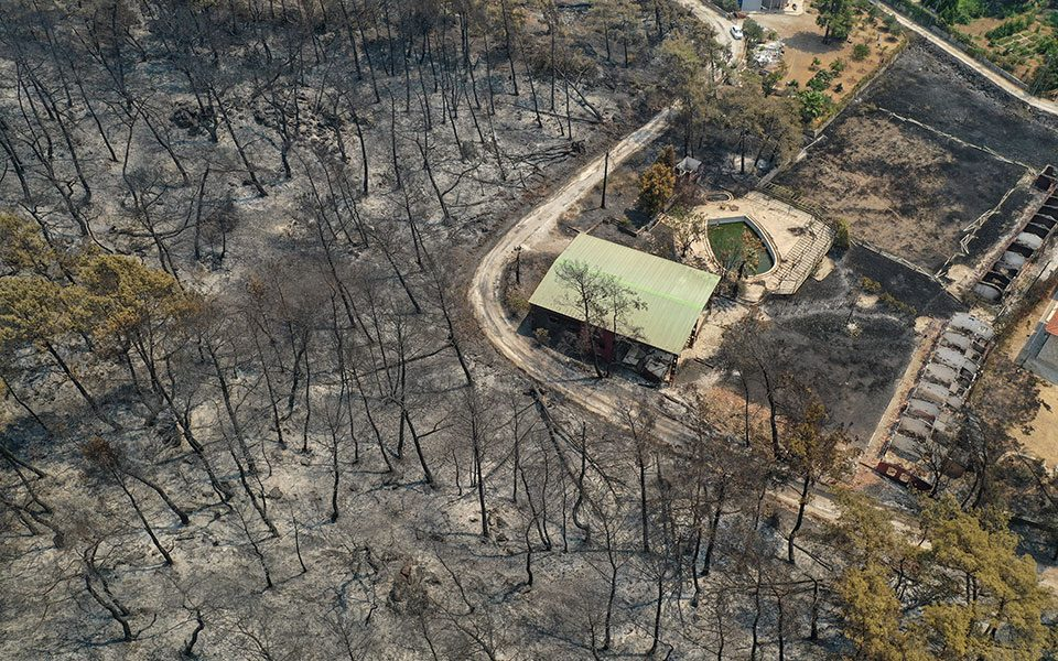 Исцрпувачка борба со стихијата: Под контрола ставени 122 од 129 шумски пожари во Турција