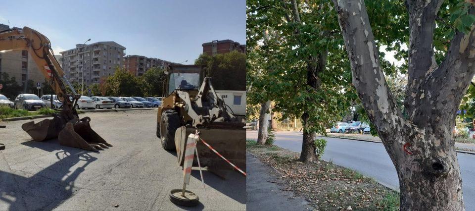"""Голем протест во Аеродром против сечењето на дрвјата кај улицата """"Васко Карангелески"""""""