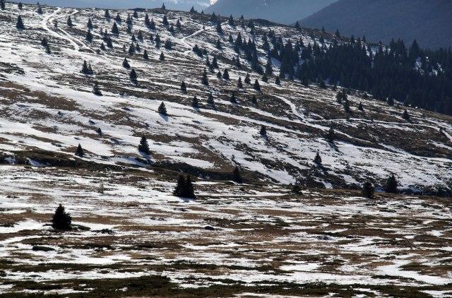 Падна снег на Копаоник