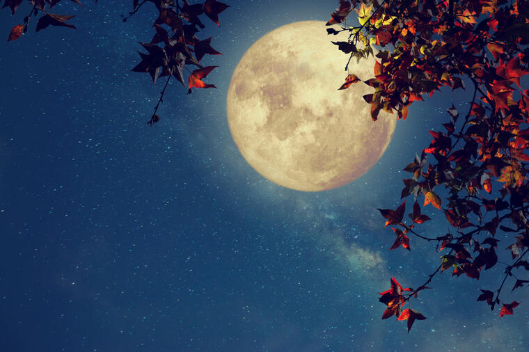 Вечерва погледнете во небо и 3 пати повторете желба: Моќен период кој ги исполнува сите замисли!