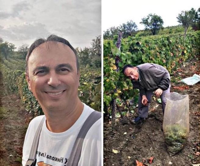 Чулев од Кавадарци: Жално е што маката и трудот на лозарите воопшто не се вреднува