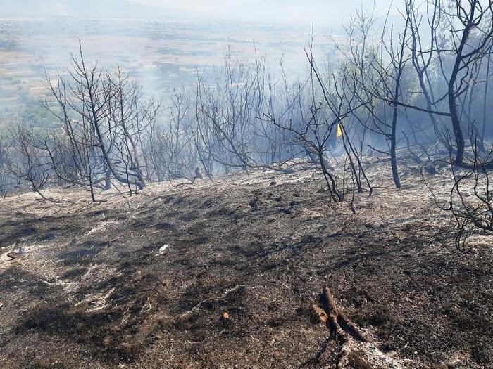 Изгаснат пожарот над селото Вељуса