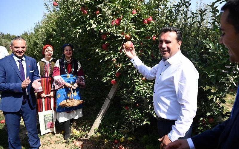 Заев: Ние знаеме да го цениме трудот на овоштарите и секогаш ќе бидеме на страната на земјоделците
